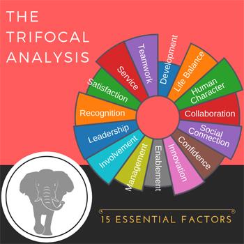 Trifocal Factors