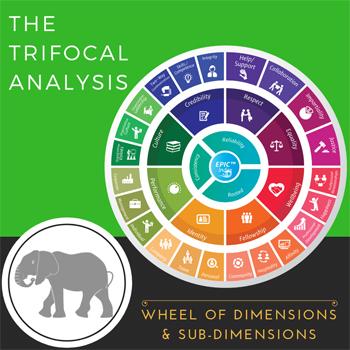 Trifocal Wheel