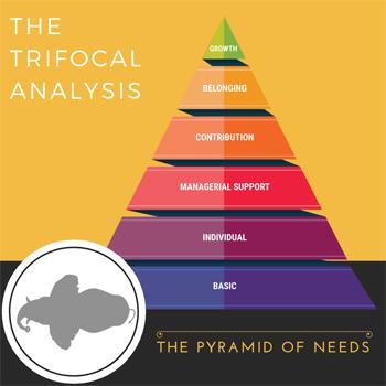 Trifocal pyramid
